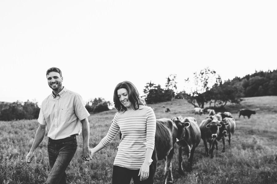 engagement, wedding, farm, magog